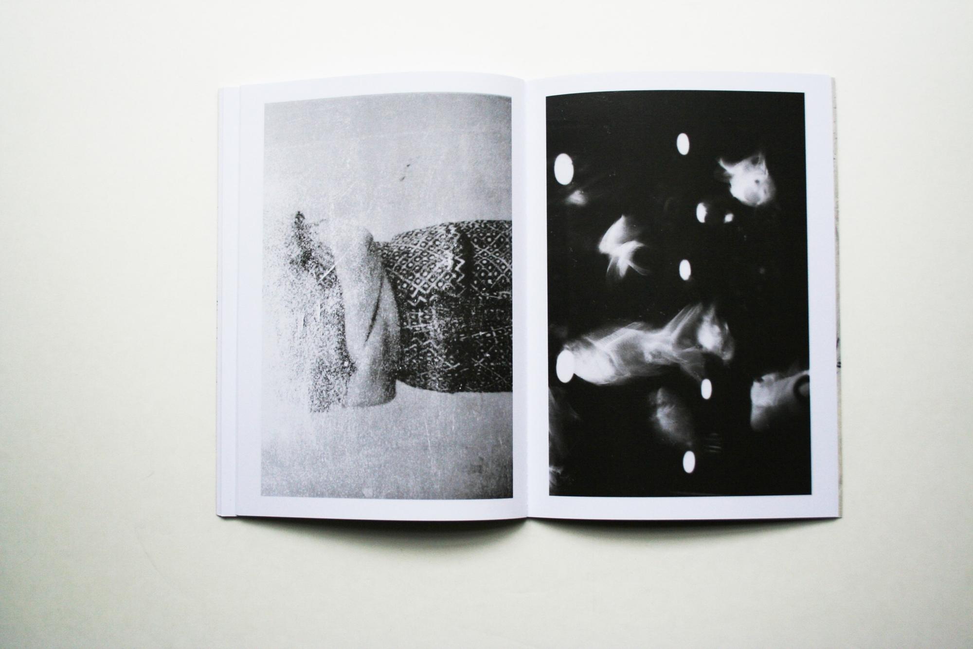 unghia del leone poesie libro fotografia